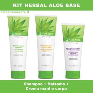 kit herbal aloe herbalife base